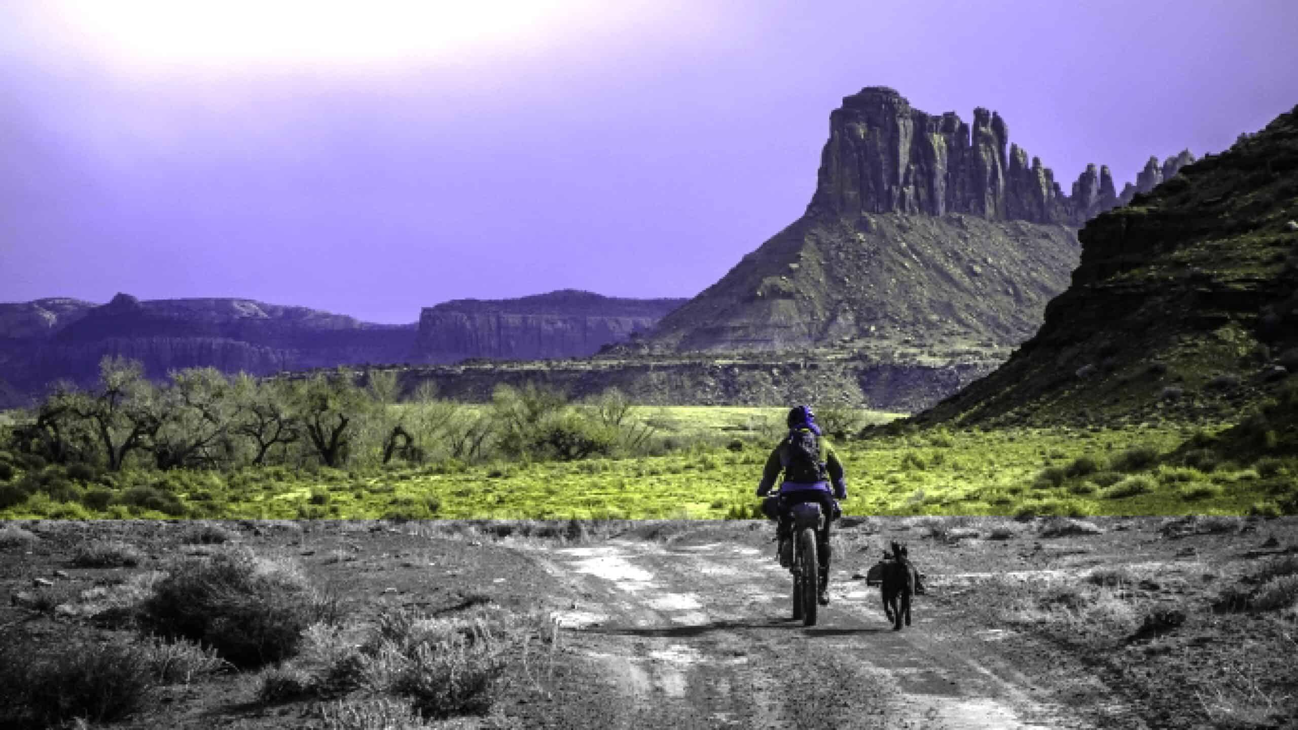 Outdoor Enthusiasts Guide to Bikepacking