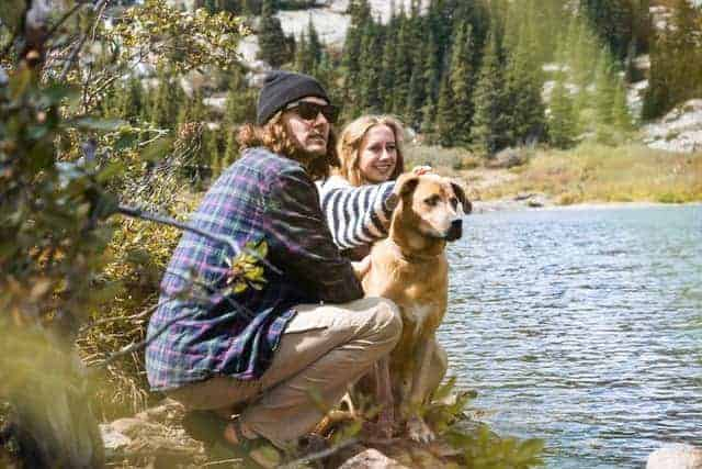 Prepare your dog for hiking