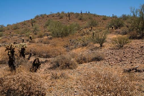 best hikes in scottsdale for family