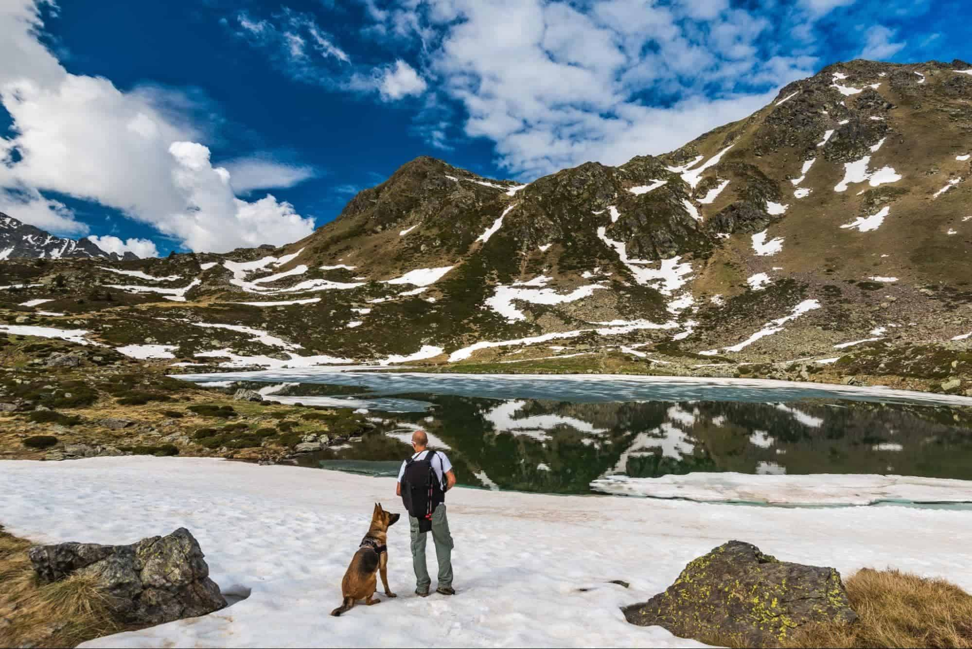 Things You Need To Know Before Hiking with Your Dogs