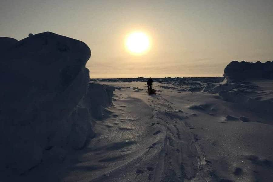 How to survive in polar environments