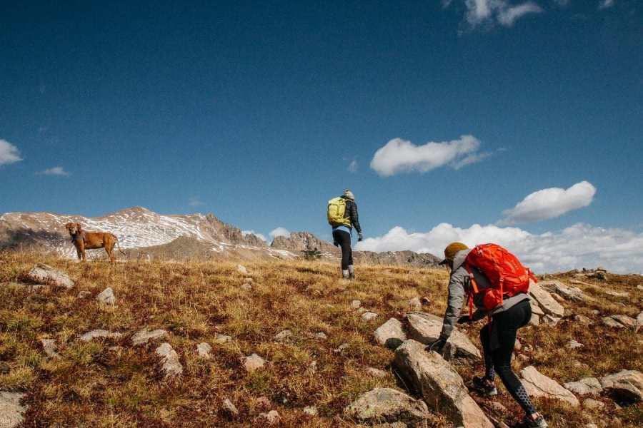 Stay Focused On Your Hiking Trip