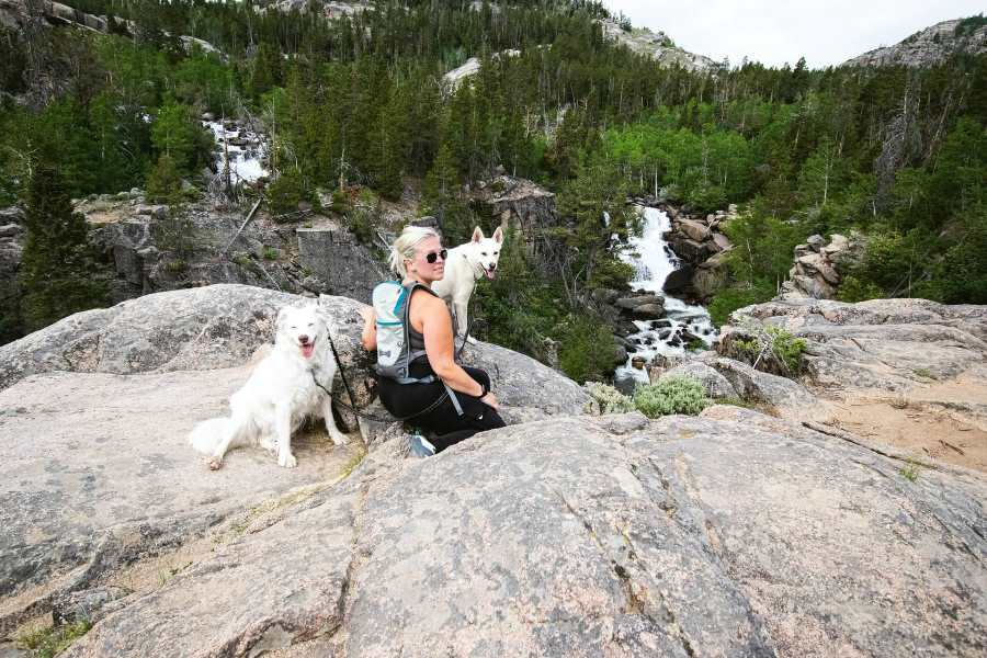 Dogs with hiking woman